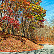 Country Curves And Vultures Art Print