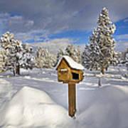 Country Mailbox Art Print