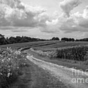 Country Road Art Print by Chris Scroggins