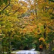 Country Road Fall Vermont Art Print