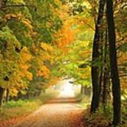 Country Road In Autumn Print by Terri Gostola