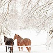 Country Snow Art Print