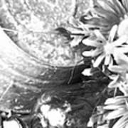 Country Summer - Bw 05 Art Print