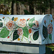 Countryside Mailbox #14 Art Print