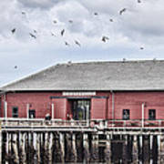 Coupeville Wharf Art Print by Jeff Swanson