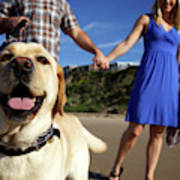 Couple Take Their Dogs For A Walk Art Print