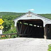 Covered Bridge For Pedestrians Art Print