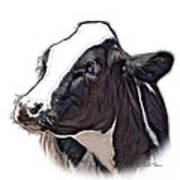 Cow Holstein - 0034 Fs Art Print