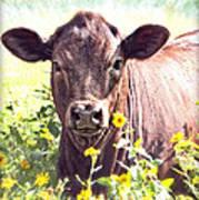 Cow In Wildflowers Art Print by Ella Kaye Dickey