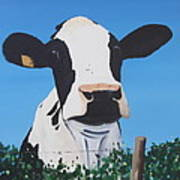 Cow On A Ditch Art Print