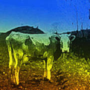 Cow On Lsd Art Print