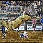 Cowboy Down Art Print