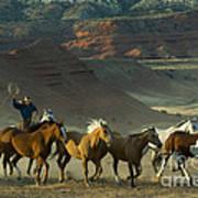 Cowboy Driving Horses Art Print