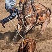Cowboy Ropes Calf  Art Print