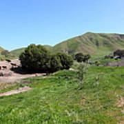 Cows Along The Rolling Landscapes Of The Black Diamond Mines In Antioch California 5d22291 Art Print by Wingsdomain Art and Photography