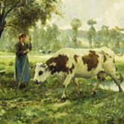 Cows At Pasture  Art Print