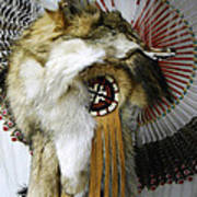 Coyote Headdress 1 Art Print