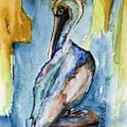 Cozumel Pelican  Art Print