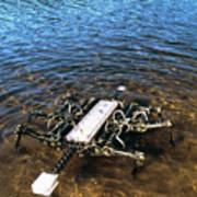 Crab Robot Art Print