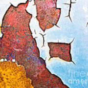 Cracked Gate Detail Art Print