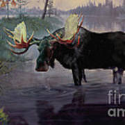 Craven Moose Art Print