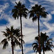 Crazy Cloud Palms Art Print