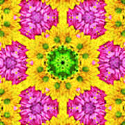 Crazy Daises - Spring Flowers - Bouquet - Gerber Daisy Wanna Be - Kaleidoscope 1 Art Print