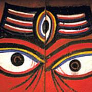 Crazy Eyes On Doors Art Print