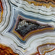 Crazy-lace Agate From Mexico, Close-up Art Print