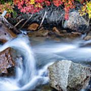 Creek At North Lake Ca_1 Art Print