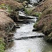 Creek In Alabama Art Print