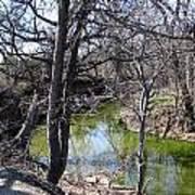Creek In North Texas Art Print