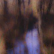 Creek In The Autumn Mist  Art Print