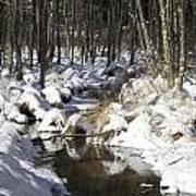 Creek In Winter Art Print