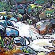 Creek Art Print by Nadi Spencer