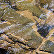 Creek Reflections Art Print