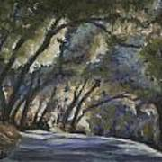 Creek Road Oaks Art Print