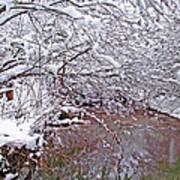 Creekside In The Snow 2 Art Print