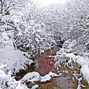 Creekside In The Snow 3 Art Print