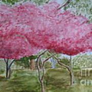 Crepe Myrtles Art Print by Katie Spicuzza