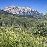 Crested Butte Scenery Art Print