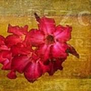 Crimson Floral Textured Art Print