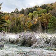Crisp Morning Frost Hillside Landscape Art Print