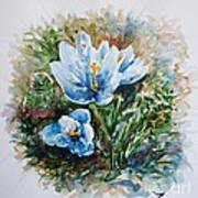 Crocuses Art Print