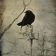 Crow On A Crooked Old Cross Art Print