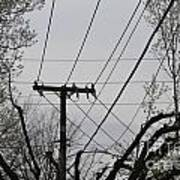 Crossing Power Lines Art Print