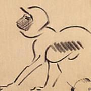 Crouching Monkey Art Print