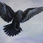 Crow Flight Art Print