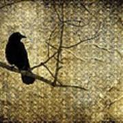 Crow In Damask Art Print
