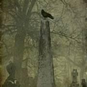 Crow On Spire Art Print